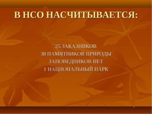 В НСО НАСЧИТЫВАЕТСЯ: 25 ЗАКАЗНИКОВ 38 ПАМЯТНИКОВ ПРИРОДЫ ЗАПОВЕДНИКОВ НЕТ 1 Н