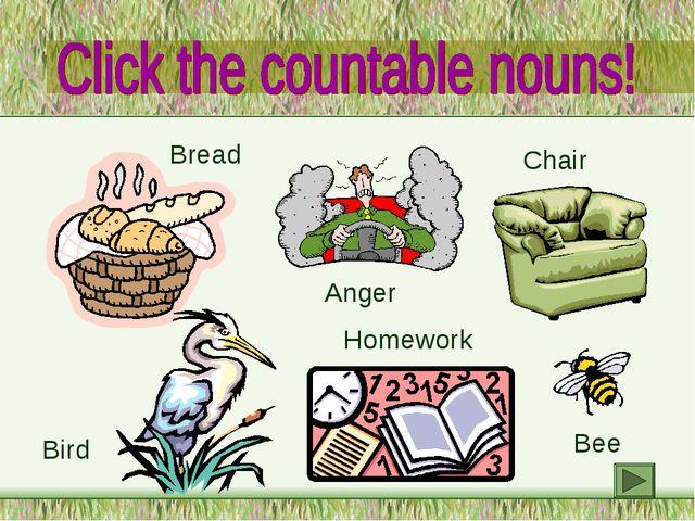 Bread Bird Anger Homework Chair Bee