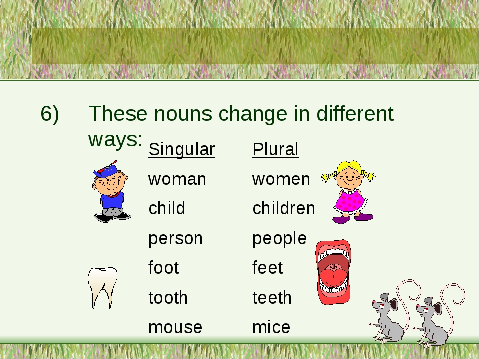 6)These nouns change in different ways: