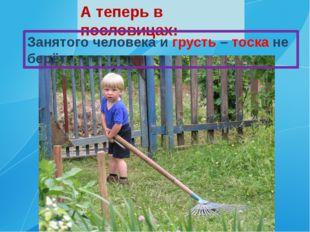А теперь в пословицах: Занятого человека и грусть – тоска не берёт.
