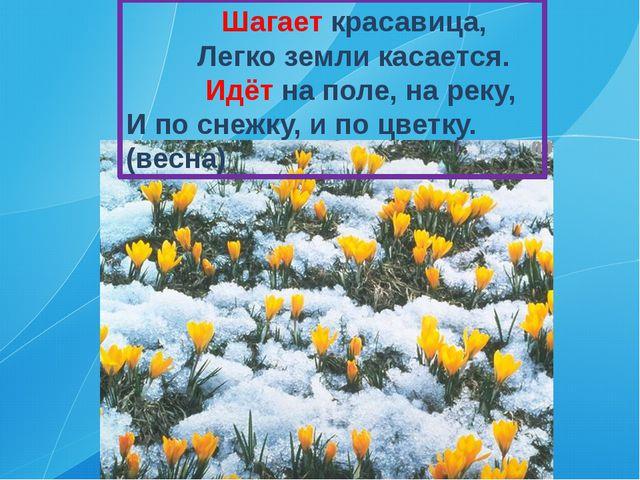 Шагает красавица, Легко земли касается. Идёт на поле, на реку, И по снежку,...