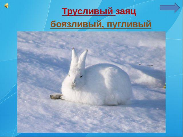 Трусливый заяц – боязливый, пугливый