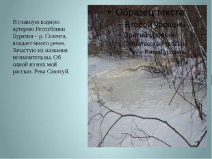В главную водную артерию Республики Бурятия – р. Селенга, впадает много речек