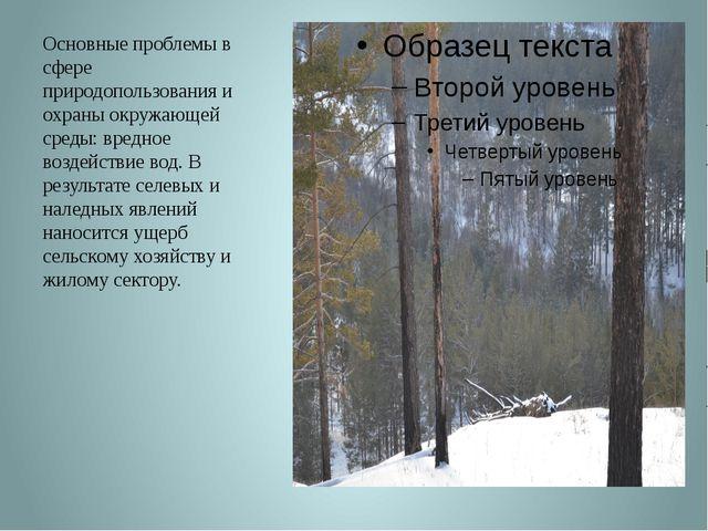 Основные проблемы в сфере природопользования и охраны окружающей среды: вредн...