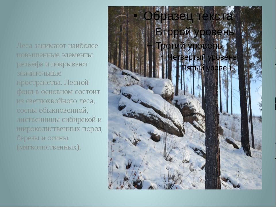 Леса занимают наиболее повышенные элементы рельефа и покрывают значительные п...