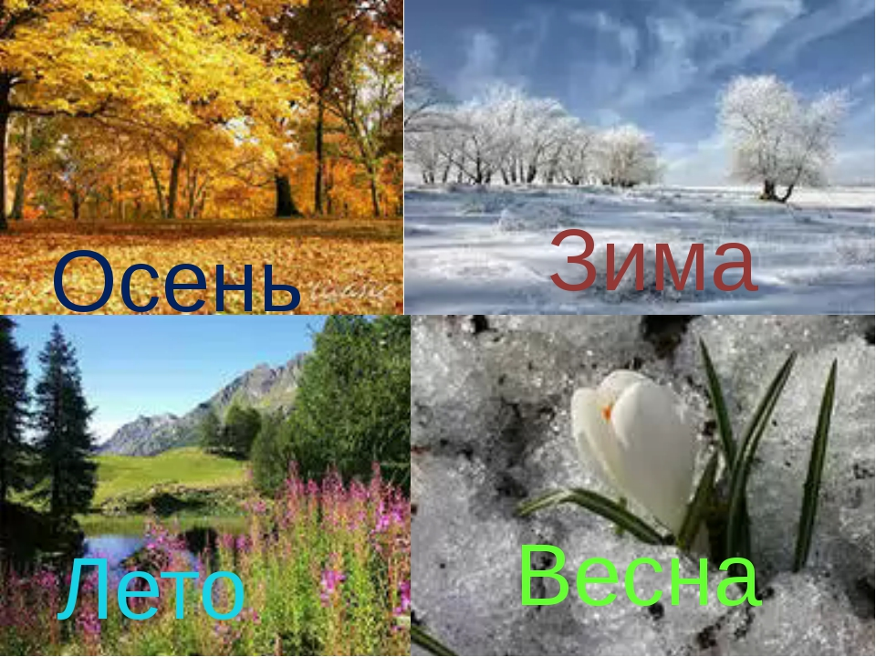 Осень Зима Лето Весна