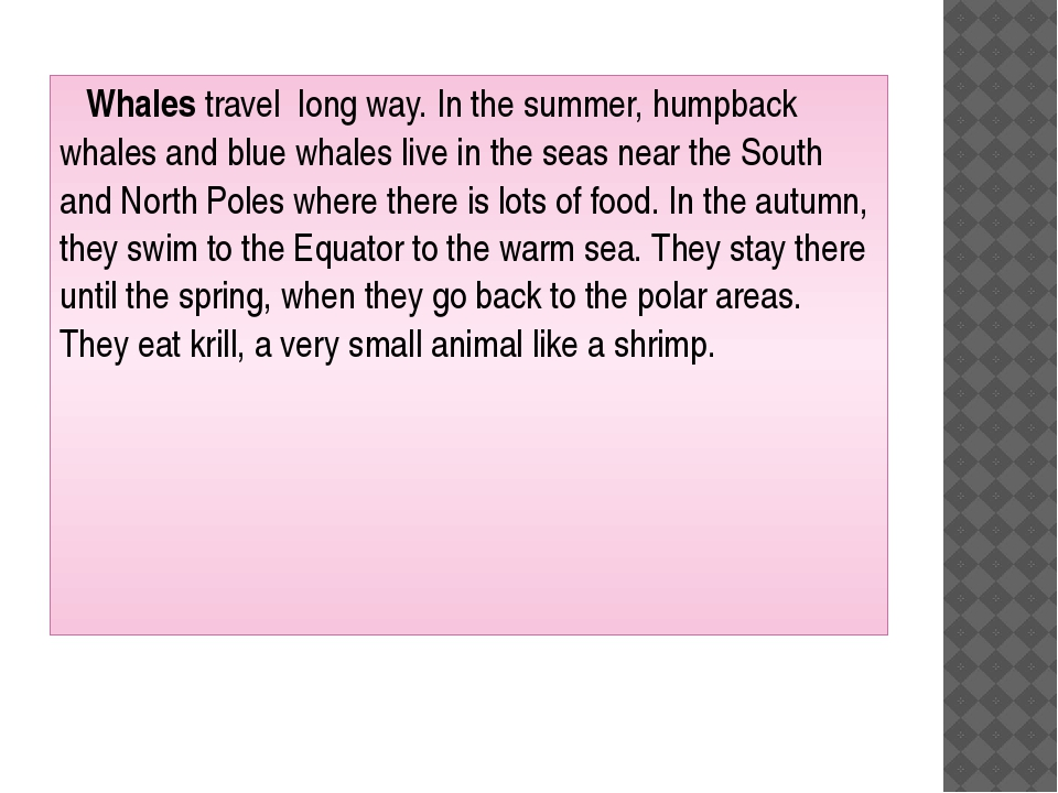 Whales travel long way. In the summer, humpback whales and blue whales live...