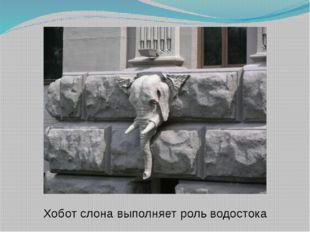 Хобот слона выполняет роль водостока
