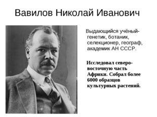 Вавилов Николай Иванович Выдающийся учёный-генетик, ботаник, селекционер, гео