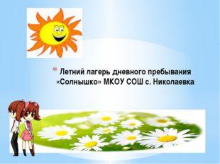 Летний лагерь дневного пребывания «Солнышко» МКОУ СОШ с. Николаевка