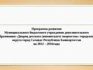 Программа развития Муниципального бюджетного учреждения дополнительного обр