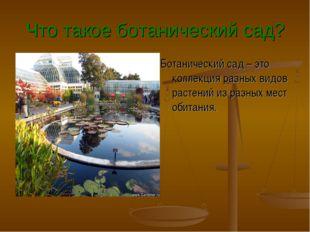 Что такое ботанический сад? Ботанический сад – это коллекция разных видов рас