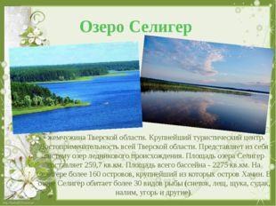 Озеро Селигер - жемчужина Тверской области. Крупнейший туристический центр. Д