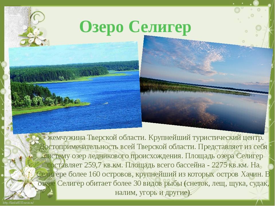Озеро Селигер - жемчужина Тверской области. Крупнейший туристический центр. Д...