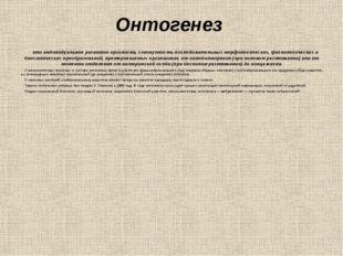 Онтогенез - это индивидуальное развитие организма, совокупность последовател