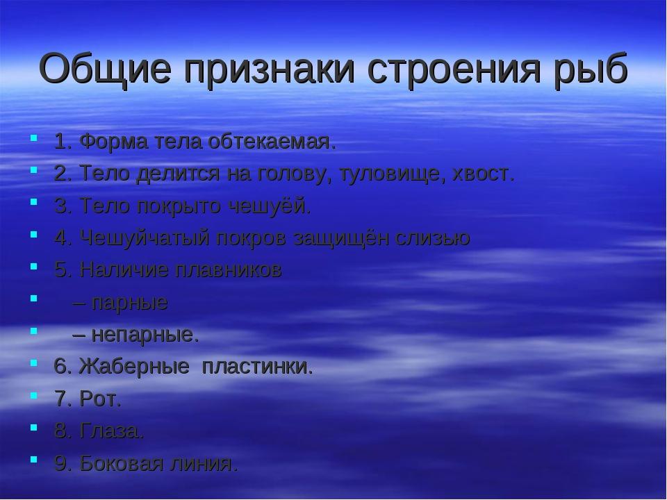 Общие признаки строения рыб 1. Форма тела обтекаемая. 2. Тело делится на голо...
