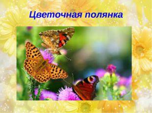 Цветочная полянка
