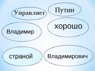 Управляет хорошо Путин Владимир Владимирович страной