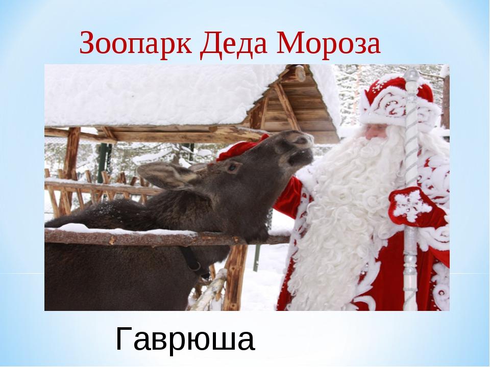 Зоопарк Деда Мороза Гаврюша