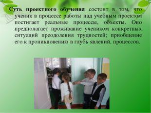 Суть проектного обучения состоит в том, что ученик в процессе работы над учеб