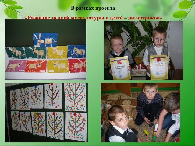 В рамках проекта «Развитие мелкой мускулатуры у детей – дизартриков».