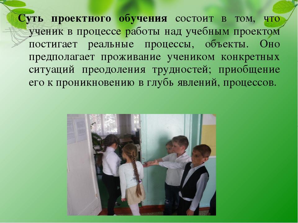 Суть проектного обучения состоит в том, что ученик в процессе работы над учеб...