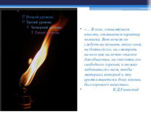 «… В огне, оживляющем юность, отливается характер человека. Вот почему не сле