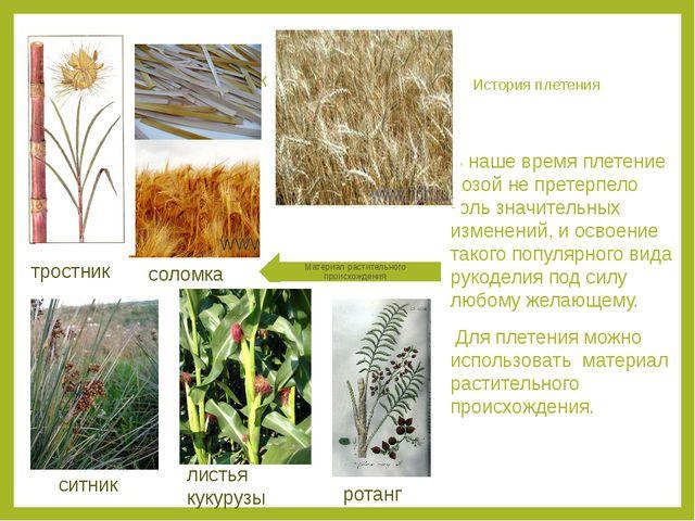 История плетения В наше время плетение лозой не претерпело коль значительных...