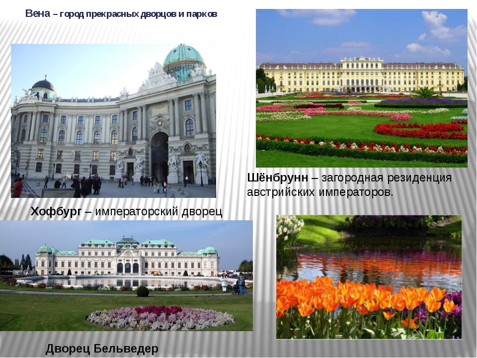 Вена – город прекрасных дворцов и парков Шёнбрунн – загородная резиденция авс...