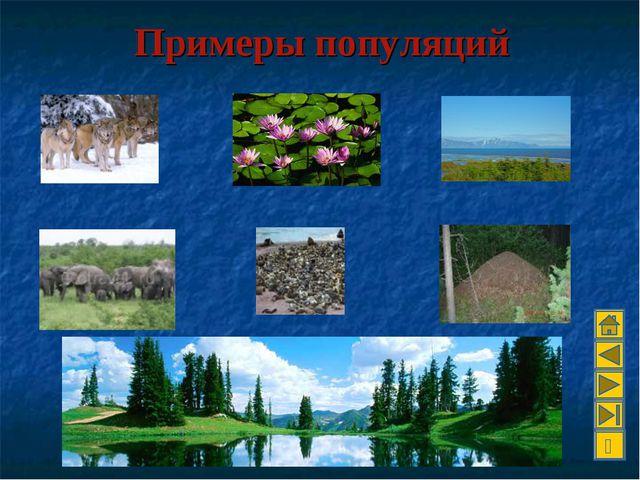 Примеры популяций