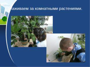 Ухаживаем за комнатными растениями.