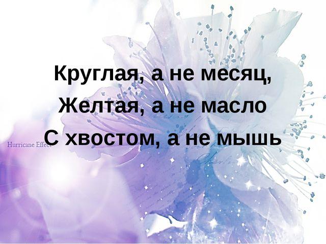 Круглая, а не месяц, Желтая, а не масло С хвостом, а не мышь