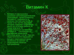 Витамин К Витамин К (филохинон) называют антигеморрагическим (геморрагия - кр