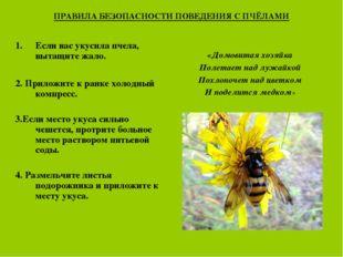 ПРАВИЛА БЕЗОПАСНОСТИ ПОВЕДЕНИЯ С ПЧЁЛАМИ Если вас укусила пчела, вытащите жал