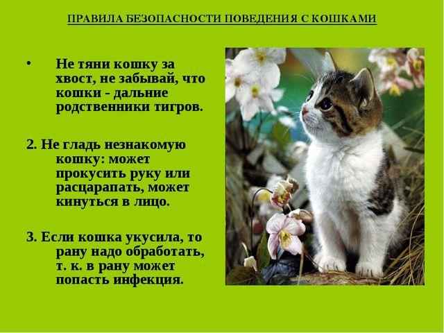 ПРАВИЛА БЕЗОПАСНОСТИ ПОВЕДЕНИЯ С КОШКАМИ Не тяни кошку за хвост, не забывай,...