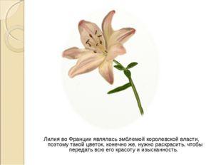 Лилия во Франции являлась эмблемой королевской власти, поэтому такой цветок,