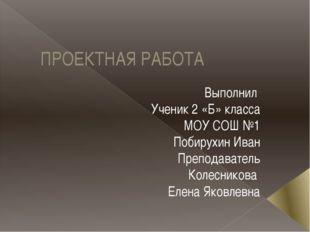 ПРОЕКТНАЯ РАБОТА Выполнил Ученик 2 «Б» класса МОУ СОШ №1 Побирухин Иван Препо