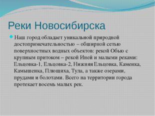 Реки Новосибирска Наш город обладает уникальной природной достопримечательнос