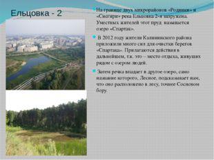 Ельцовка - 2 На границе двух микрорайонов «Родники» и «Снегири» река Ельцовка