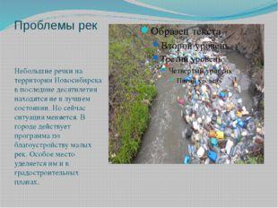 Проблемы рек Небольшие речки на территории Новосибирска в последние десятилет