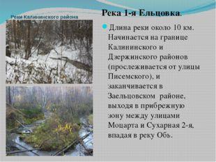Реки Калининского района Река 1-я Ельцовка. Длина реки около 10 км. Начинаетс