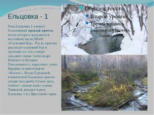Ельцовка - 1 Река Ельцовка 1-я имеет безымянный правый приток, исток которого