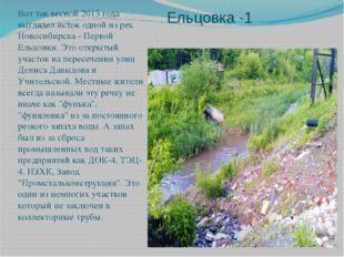 Ельцовка -1 Вот так весной 2013 года выглядел исток одной из рек Новосибирска