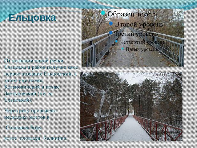 Ельцовка От названия малой речки Ельцовка и район получил свое первое названи...
