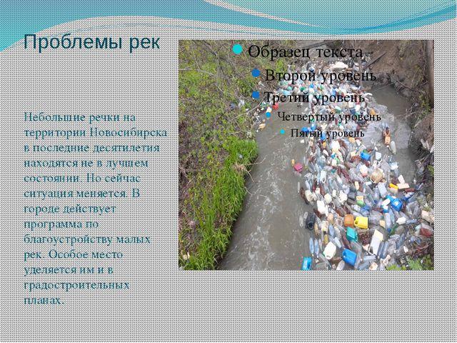 Проблемы рек Небольшие речки на территории Новосибирска в последние десятилет...