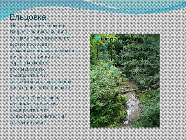 Ельцовка Места в районе Первой и Второй Ельцовок (малой и большой - как назыв...
