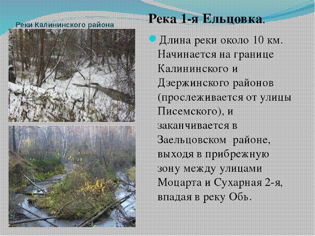 Реки Калининского района Река 1-я Ельцовка. Длина реки около 10 км. Начинаетс...