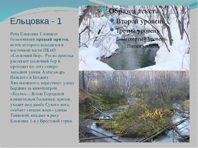 Ельцовка - 1 Река Ельцовка 1-я имеет безымянный правый приток, исток которого...