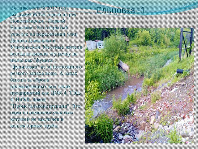 Ельцовка -1 Вот так весной 2013 года выглядел исток одной из рек Новосибирска...