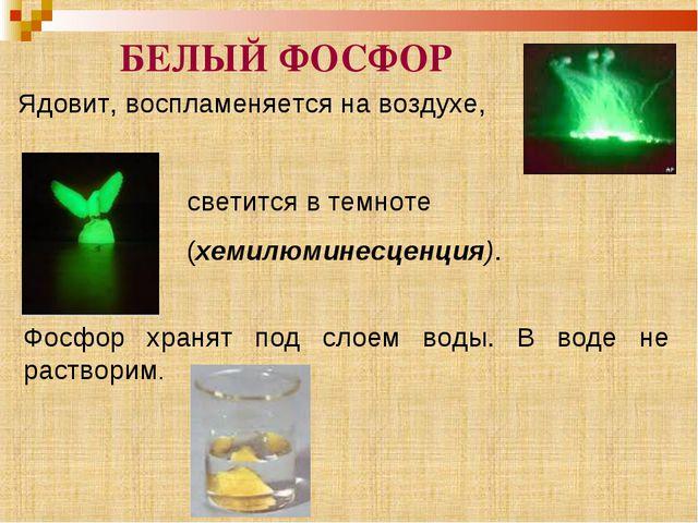 Почему в темноте светится фосфор